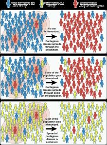 Illustration of how immunization works.